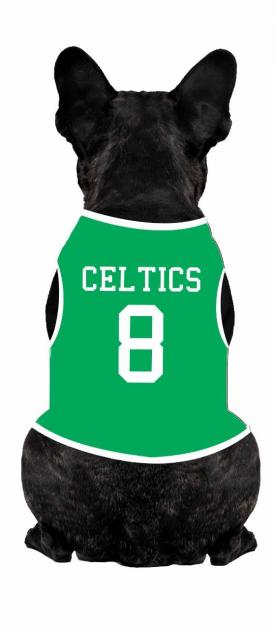 Body Para Cachorro Celtics