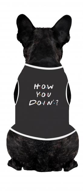 Body Para Cachorro How You Doin?
