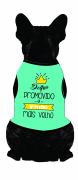 Body Para Cachorro Promovido A Irmão Mais Velha Com Nome Azul
