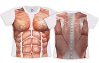 Camiseta Adulto - Corpo Humano